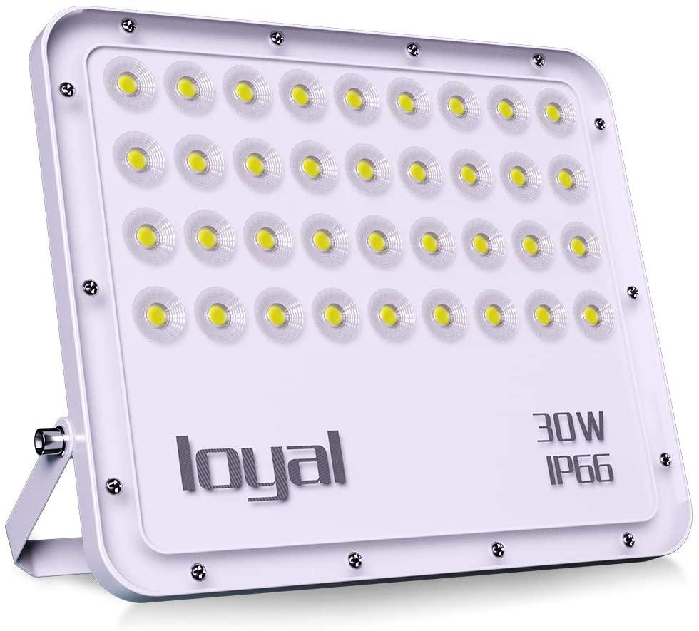 Foco LED IP66 30W