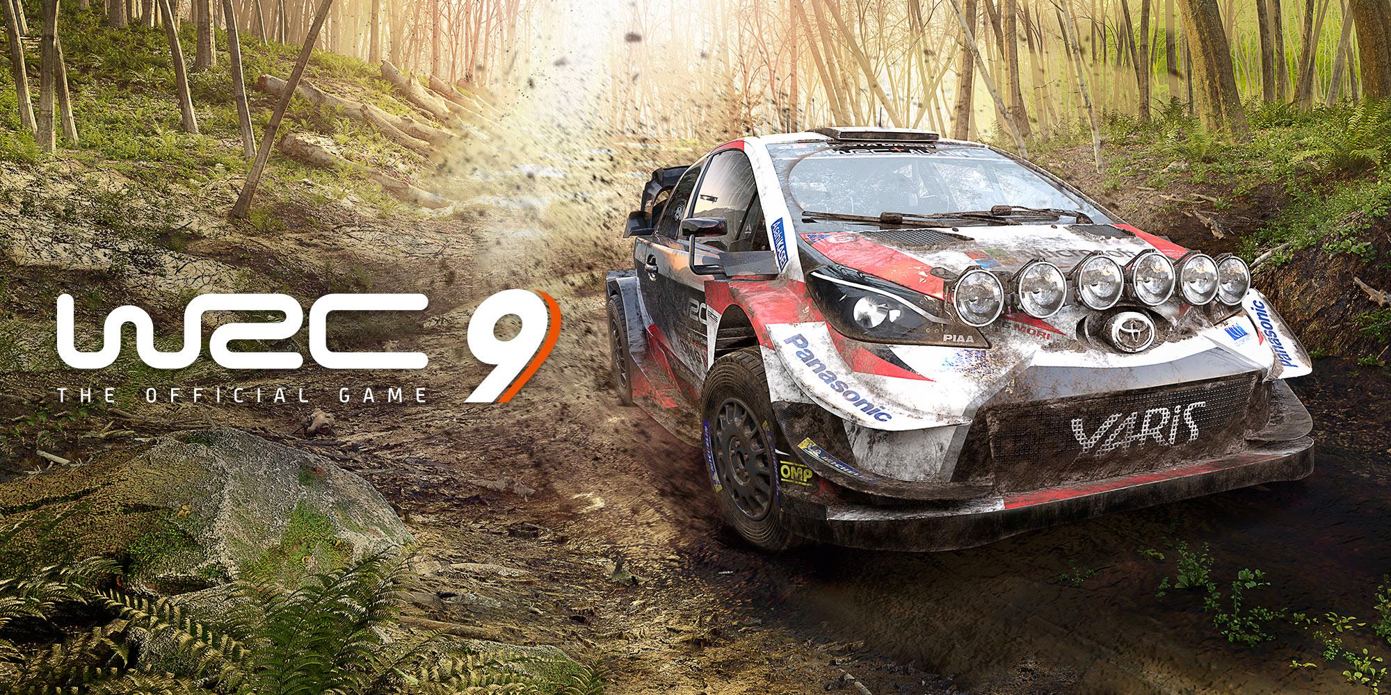 WRC 9 FIA World Rally Championship para PC