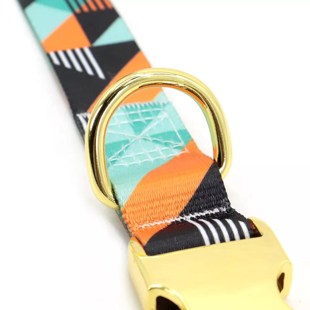Collar personalizado de nailon con estampado para perro