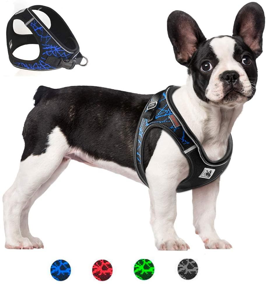 Arnés para mascotas cómodo, transpirable y con líneas reflectante (Todas las tallas y varios colores)