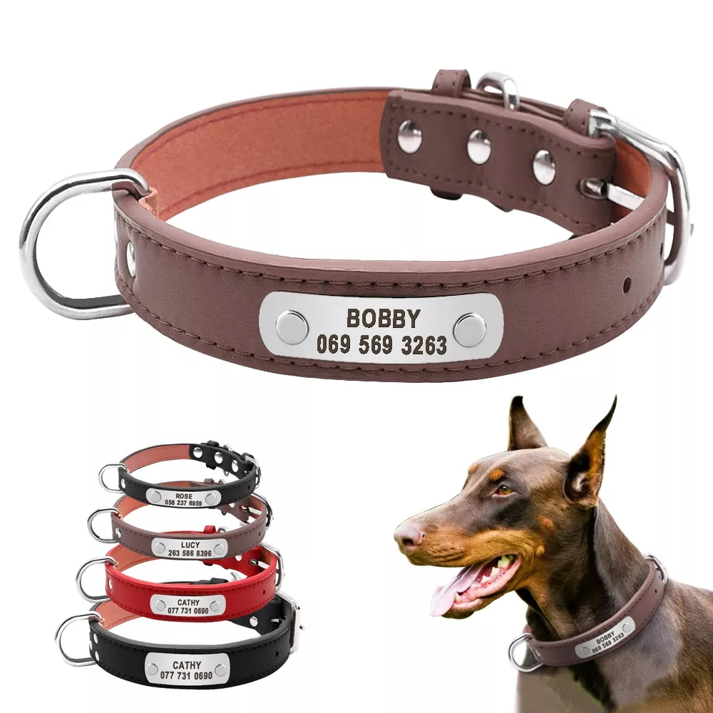 Collar para perros personalizado